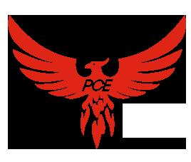 pce-icon